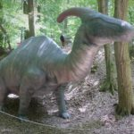 Parasaurolophus in the forest