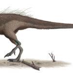 Parksosaurus walking