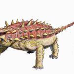Pinacosaurus spikes