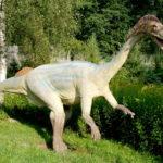 Plateosaurus in the park