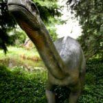 Plateosaurus long neck