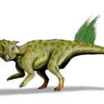 Psittacosaurus staring