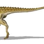 Scutellosaurus walking