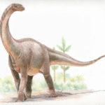 Shunosaurus looking
