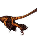 Sinornithosaurus flip wings scaled