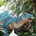 Stegosaurus color