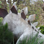 Stegosaurus lurking