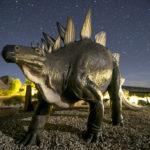 Stegosaurus under the stars