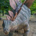 Stegosaurus wandering