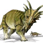 Styracosaurus walking