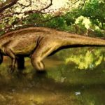Suchomimus in the water