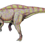 Suchomimus left view