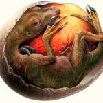 THERIZINOSAURUS egg