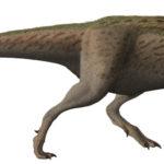 Tarbosaurus side view