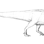 Tenontosaurus sketch
