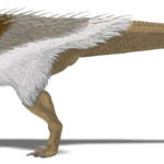 Thescelosaurus feathered body