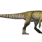 Torvosaurus right view