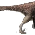 Utahraptor with feathers