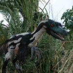 Velociraptor color scaled