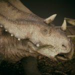 chasmosaurus head