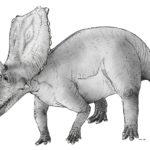 chasmosaurus sketch walking