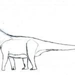 Aragosaurus long neck