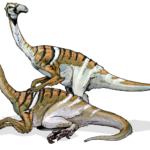 Nanshiungosaurus two