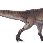 Piatnitzkysaurus left view