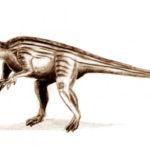 Thecodontosaurus standing