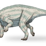 Udanoceratops walking