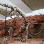 Yunnanosaurus skeleton scaled